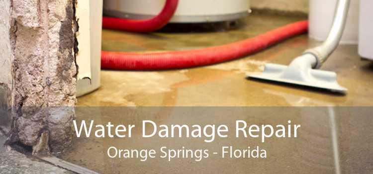 Water Damage Repair Orange Springs - Florida