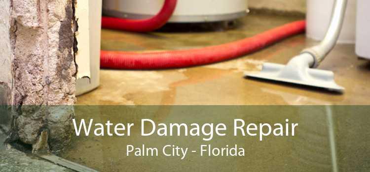 Water Damage Repair Palm City - Florida