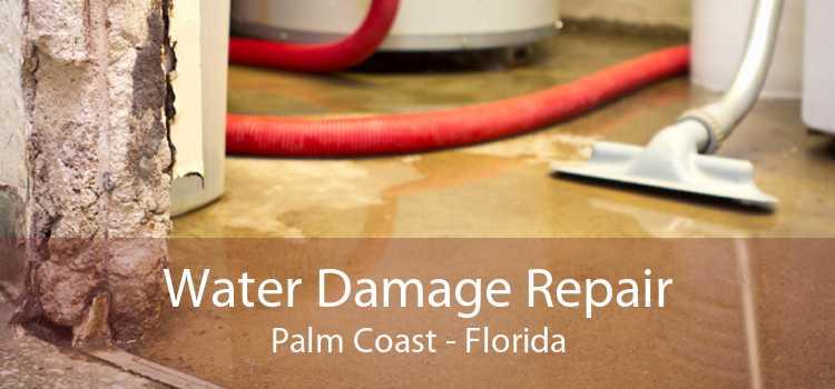 Water Damage Repair Palm Coast - Florida