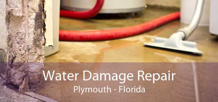 Water Damage Repair Plymouth - Florida