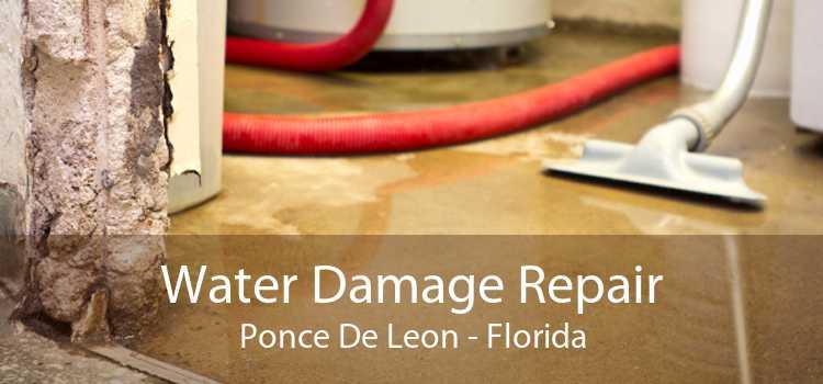 Water Damage Repair Ponce De Leon - Florida