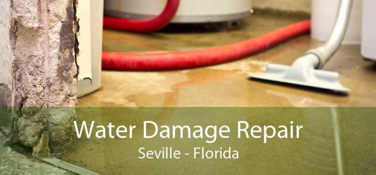 Water Damage Repair Seville - Florida