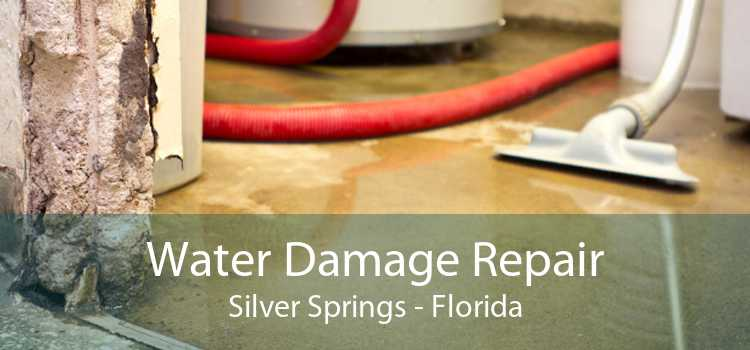 Water Damage Repair Silver Springs - Florida