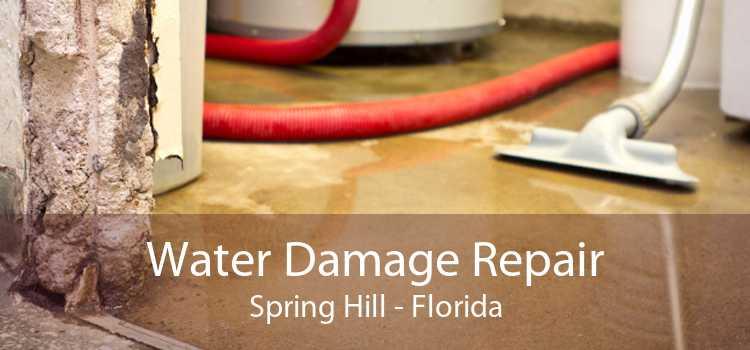 Water Damage Repair Spring Hill - Florida