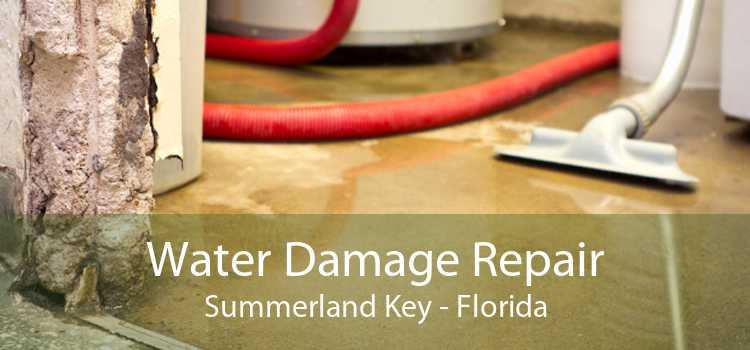 Water Damage Repair Summerland Key - Florida