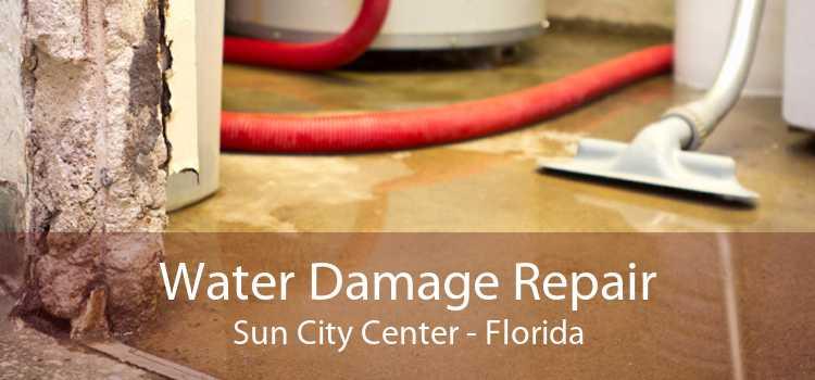 Water Damage Repair Sun City Center - Florida