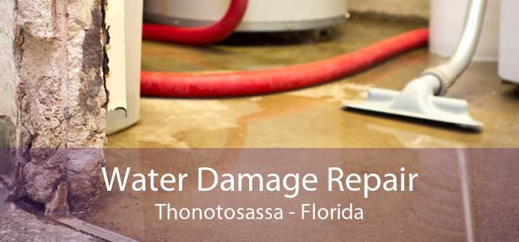 Water Damage Repair Thonotosassa - Florida