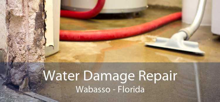 Water Damage Repair Wabasso - Florida