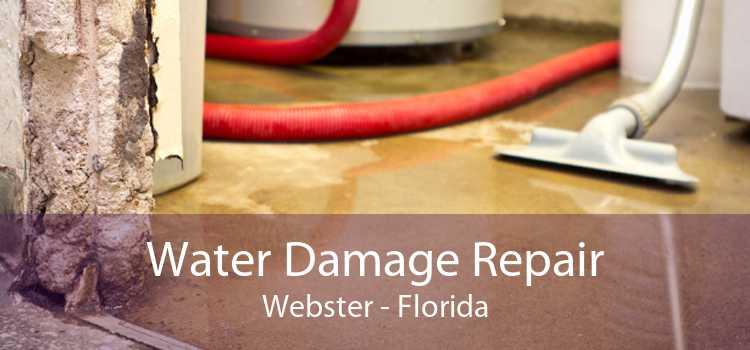 Water Damage Repair Webster - Florida