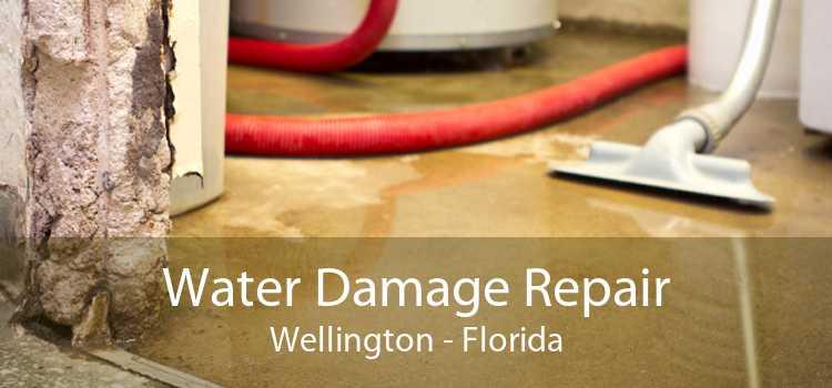 Water Damage Repair Wellington - Florida