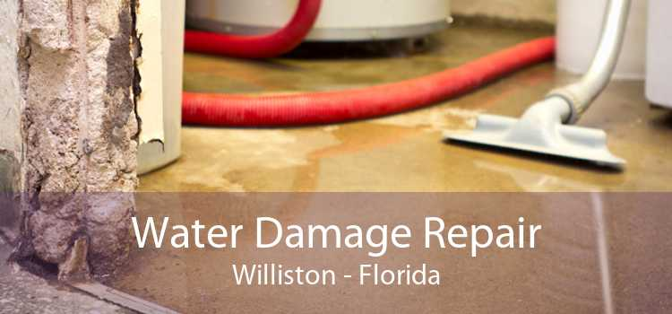 Water Damage Repair Williston - Florida