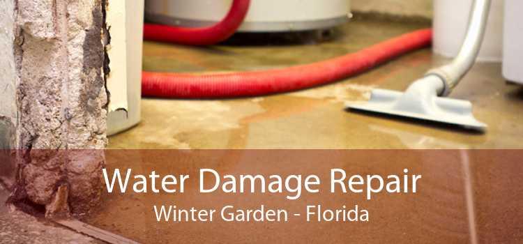 Water Damage Repair Winter Garden - Florida