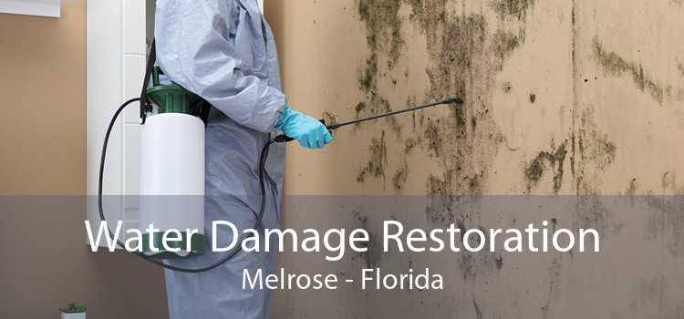 Water Damage Restoration Melrose - Florida