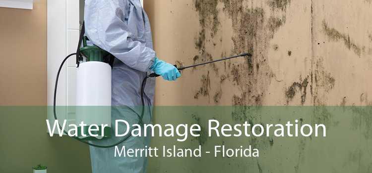 Water Damage Restoration Merritt Island - Florida