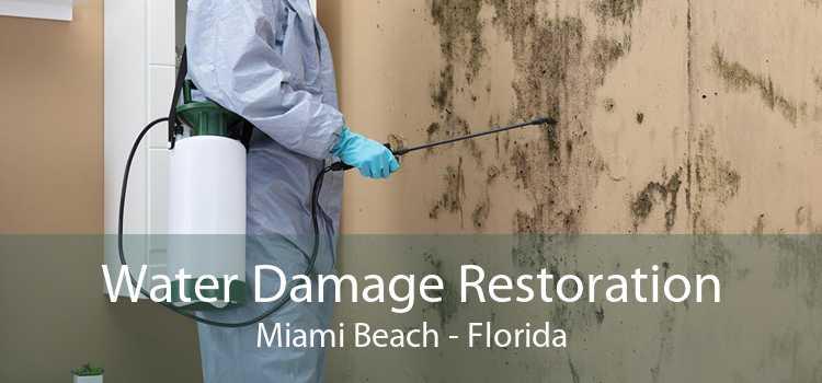 Water Damage Restoration Miami Beach - Florida