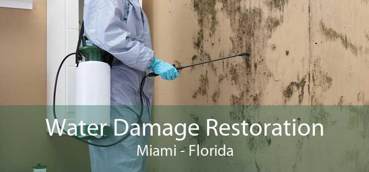 Water Damage Restoration Miami - Florida