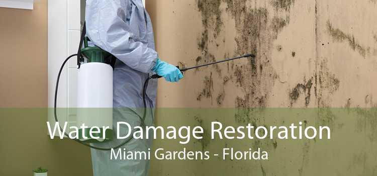 Water Damage Restoration Miami Gardens - Florida