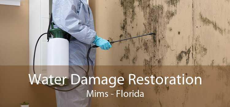 Water Damage Restoration Mims - Florida