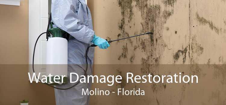 Water Damage Restoration Molino - Florida