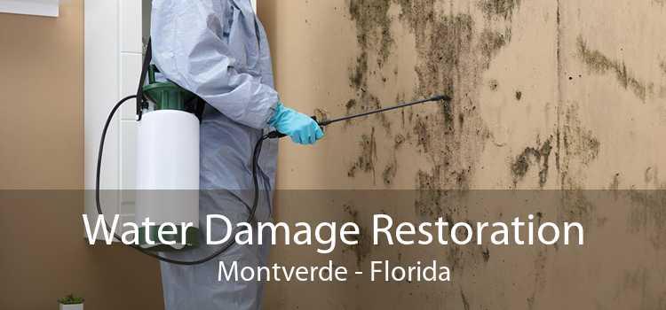 Water Damage Restoration Montverde - Florida
