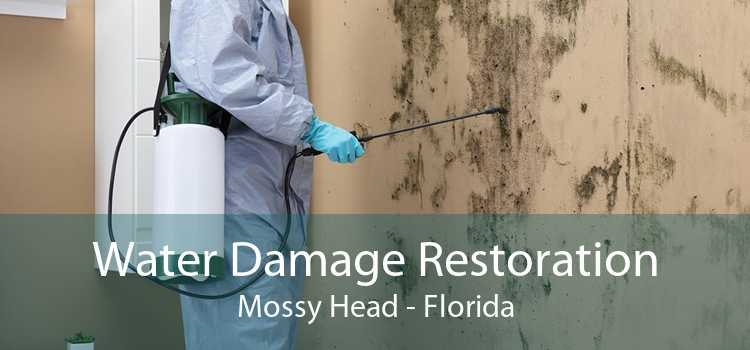Water Damage Restoration Mossy Head - Florida