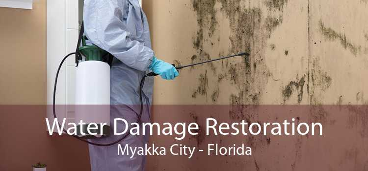 Water Damage Restoration Myakka City - Florida