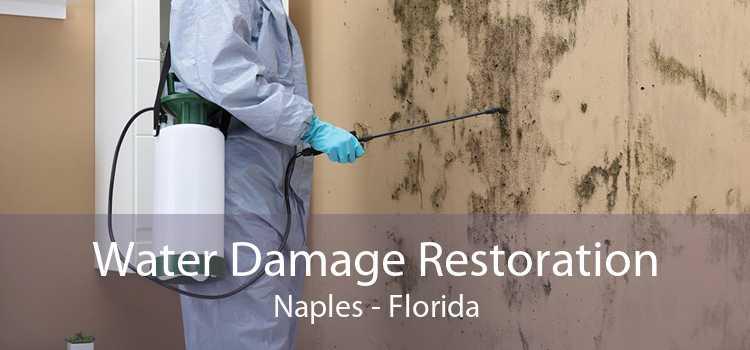 Water Damage Restoration Naples - Florida