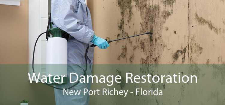 Water Damage Restoration New Port Richey - Florida