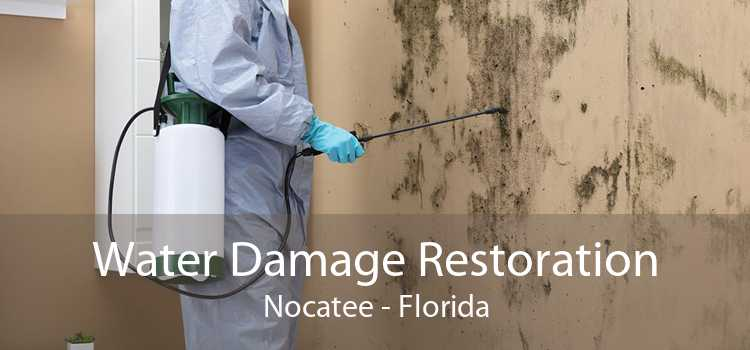 Water Damage Restoration Nocatee - Florida