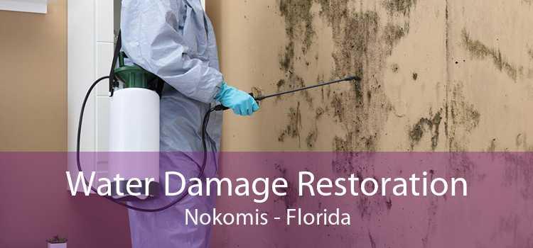 Water Damage Restoration Nokomis - Florida