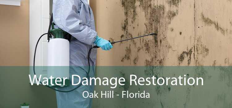 Water Damage Restoration Oak Hill - Florida