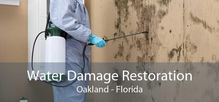 Water Damage Restoration Oakland - Florida