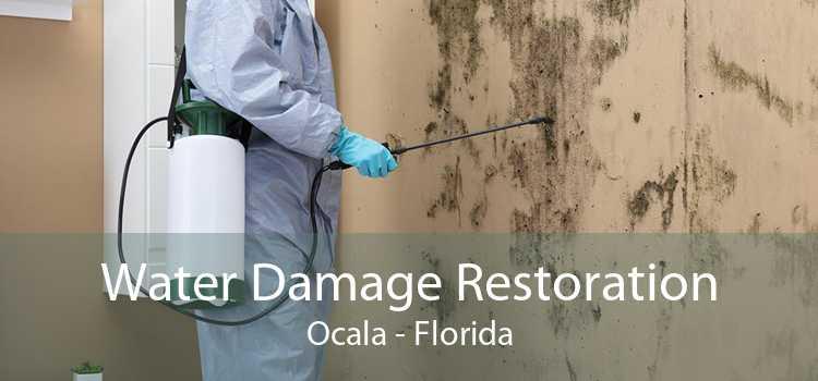 Water Damage Restoration Ocala - Florida