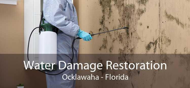 Water Damage Restoration Ocklawaha - Florida