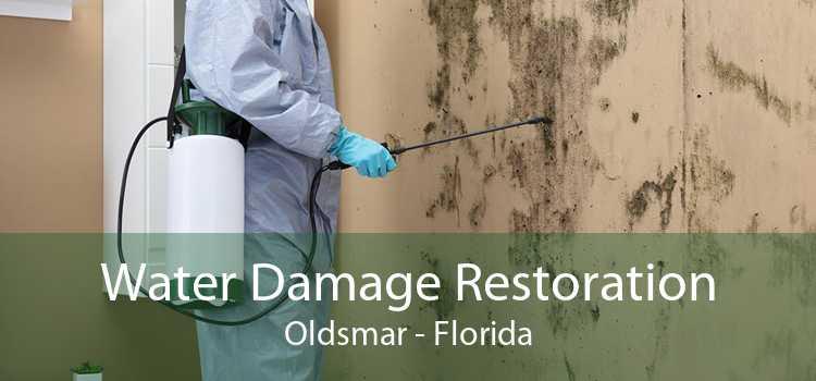Water Damage Restoration Oldsmar - Florida