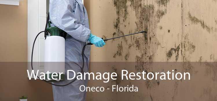 Water Damage Restoration Oneco - Florida