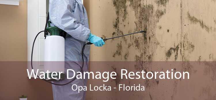 Water Damage Restoration Opa Locka - Florida