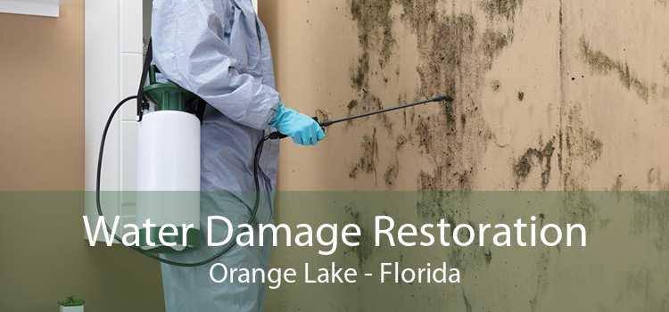 Water Damage Restoration Orange Lake - Florida