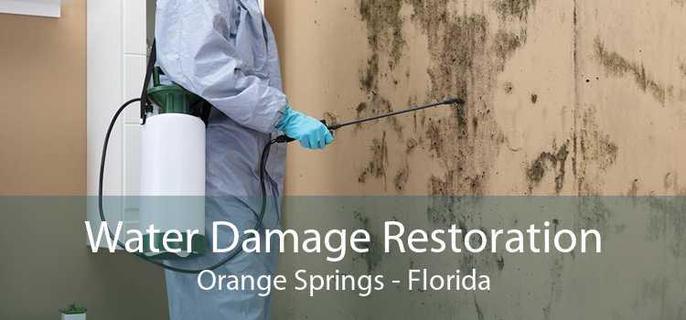 Water Damage Restoration Orange Springs - Florida