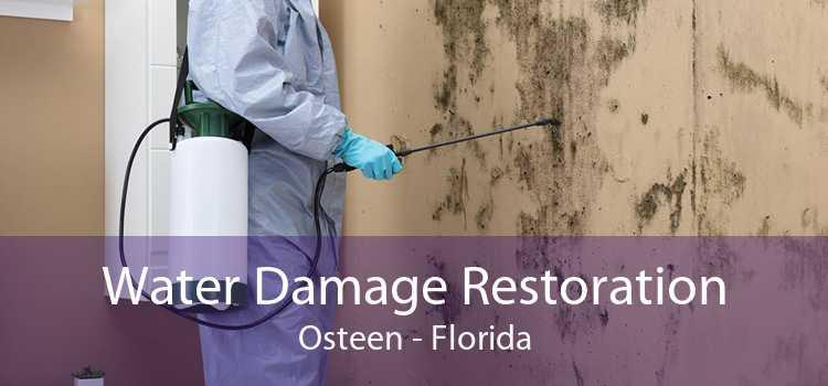 Water Damage Restoration Osteen - Florida