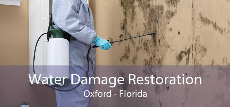 Water Damage Restoration Oxford - Florida