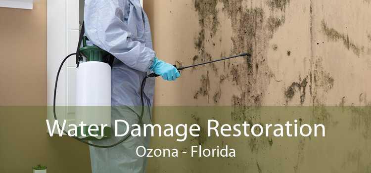 Water Damage Restoration Ozona - Florida