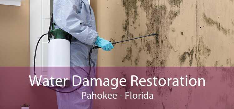 Water Damage Restoration Pahokee - Florida