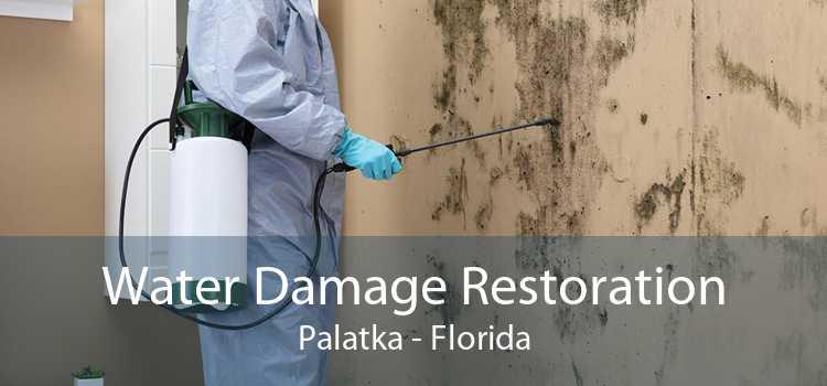 Water Damage Restoration Palatka - Florida