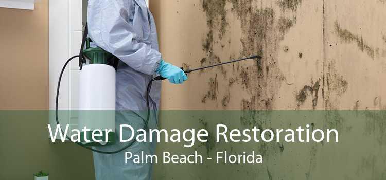 Water Damage Restoration Palm Beach - Florida