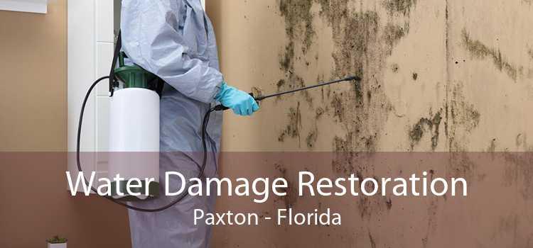 Water Damage Restoration Paxton - Florida