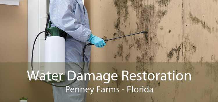 Water Damage Restoration Penney Farms - Florida