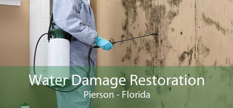 Water Damage Restoration Pierson - Florida