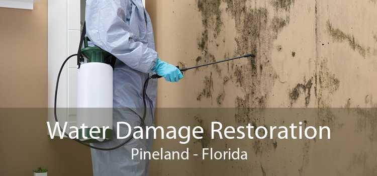Water Damage Restoration Pineland - Florida