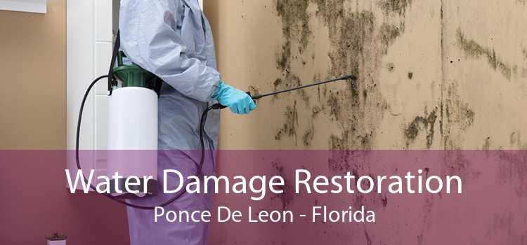 Water Damage Restoration Ponce De Leon - Florida